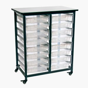 Mobile Bin Storage Unit - Double Row with Small Clear Bins